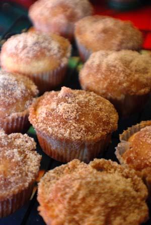 Barbara Adams Beyond Wonderful » French Breakfast Muffins Recipe